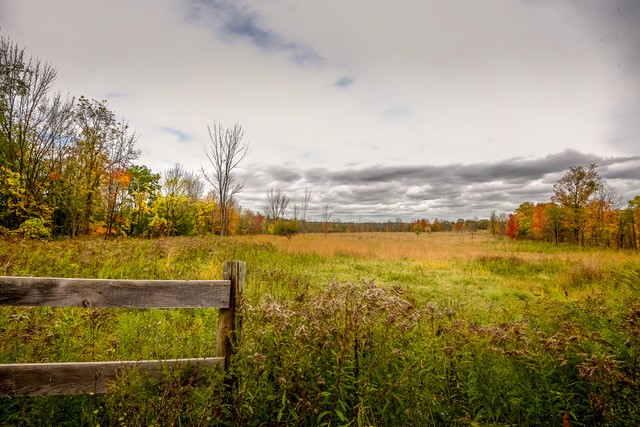 Landscape of McMaster forest featureing a green and yellow meadow with a wooden fence in the foreground