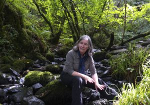 photo of speaker Diana Beresford-Kroeger sitting on a rock in front of green trees